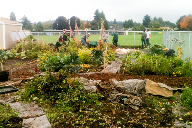 Community Garden Nation: Eight Urban Harvesters Talk Autumn Chores, Crops and Planting