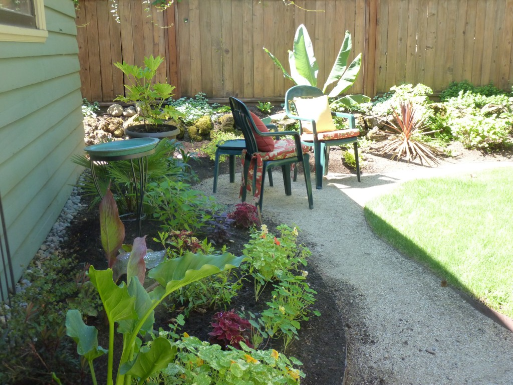 NW Tropical and Edible Cottage Garden - Portfolio: After